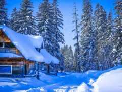 winter, россия, снег