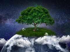 дерево, под, идея