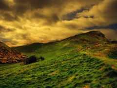 природа, landscape, full