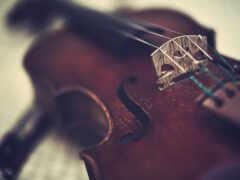 крыша, скрипка