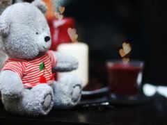 teddy, мило