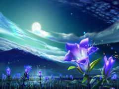 луна, луной, ночь