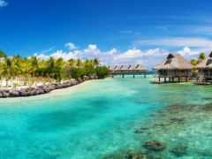 пальмы, море, ocean