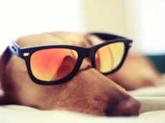 очки, монна, чтоб