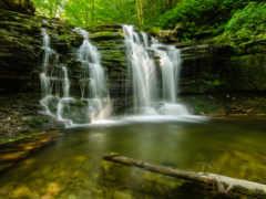 лес, powerpoint, водопад