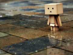 human, wet, loneliness