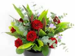 цветы, multus, dushit