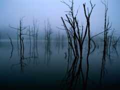 озеро, intpicture, отражение