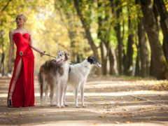 красном, девушка, платье Фон № 147256 разрешение 1920x1280