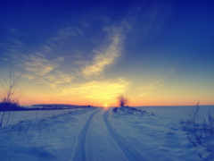 winter, снег, sun
