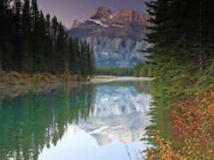 лес, река, гора