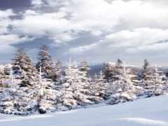 снег, selfie, наклейка