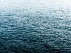 море, спокойствие, picjumbo