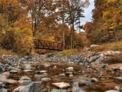 creek, wilket