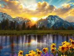 природа, teton, landscape