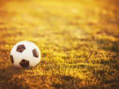 мяч, спорт, трава