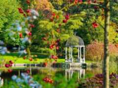 garden, oir, park