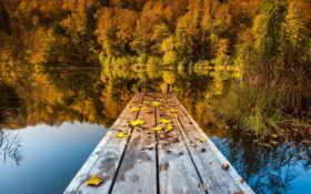 осень, природа Фон № 22473 разрешение 2560x1600