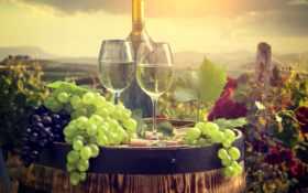 вино, плоды, еда