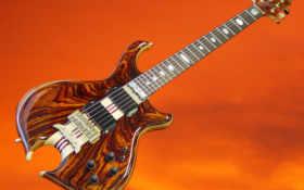 darling 6-string guitar