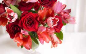 цветы, букеты, букет Фон № 70767 разрешение 1920x1080