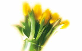 цветы, quot
