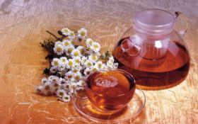tea, растений