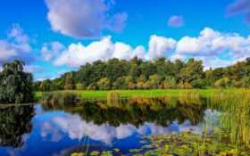 finland, пруд