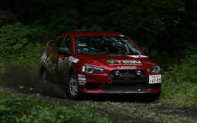 rally, cars