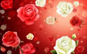 цветы, розы Фон № 114176 разрешение 1680x1050