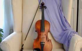 art, скрипка, музыка