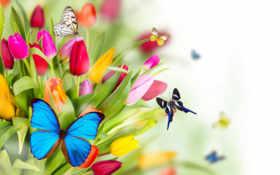 цветы, prezentacii, фоны