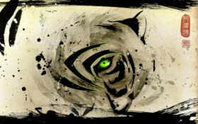 тигр, глаз, брови