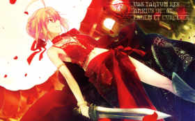 fate, extra