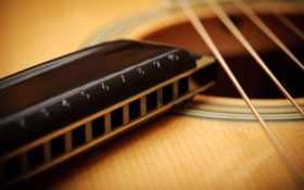 гитара, гармошка, губная Фон № 57684 разрешение 2560x1600