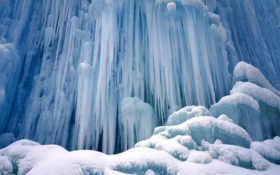 winter, fondos