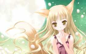 аниме, hair Фон № 29797 разрешение 1920x1200