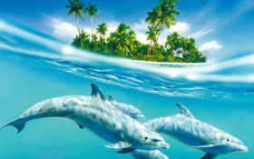 островдельфины