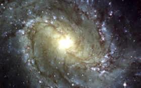 southern, galaxy