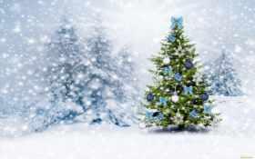 новорічна, ялинка, christmas