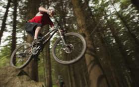 bike, mountain