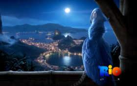 rio, город, ночь