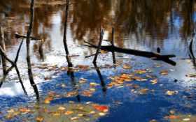 озеро отражение осень