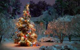 год, new, дерево Фон № 53176 разрешение 1680x1050