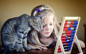 девочка и кот считают