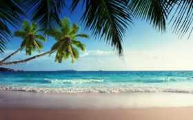 пляж, рай, посох