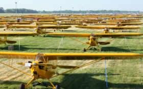 cub, piper, aircraft