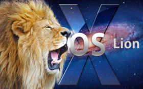lion, panthera, mac