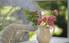 цветы, розы