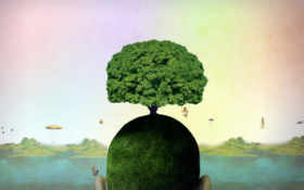 дерево, жизни